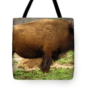 Pennsylvania Bison Tote Bag