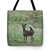 Pennsylvania White Tail Deer Tote Bag