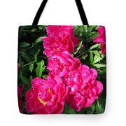 Peony Named Karl Rosenfield Tote Bag