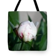 Peppermint Peony Tote Bag