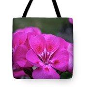 Pepto Pink Tote Bag
