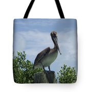 Perched Pelican Tote Bag