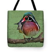 Perched Wood Duck Tote Bag