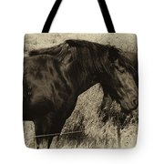Percheron Prairie Horses Tote Bag