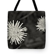 Perennial Sow-thistle Monochrome Tote Bag