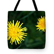 Perennial Sow-thistle Tote Bag