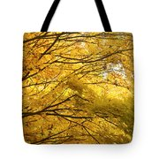 Perfect Autumn Tote Bag