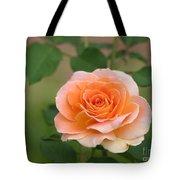 Perfect Peach Petals Tote Bag