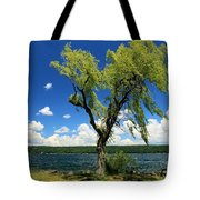 Perfect Picnic Spot Tote Bag
