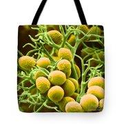 Peronospora Parasitica Tote Bag