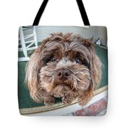 Perplexed Pouch Tote Bag