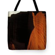Person Standing Atop The Kings Canyon Tote Bag