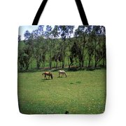Petaluma Pasture Tote Bag