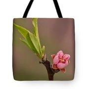Petite Peach Tote Bag