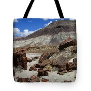 Petrified Forest 2 Tote Bag