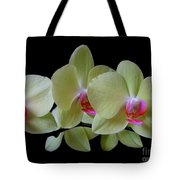 Phalaenopsis Fuller's Sunset Orchid No 1 Tote Bag