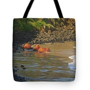 Phillip Island 2 Tote Bag