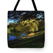 Phoenix Park, Dublin, Co Dublin, Ireland Tote Bag by The Irish Image Collection
