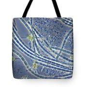 Phytoplankton, Lm Tote Bag