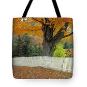 Picket Fence Tote Bag