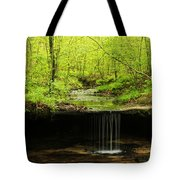 Pickle Spring In Missouri Tote Bag