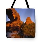 Picture 005 Tote Bag