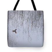 Pied-billed Grebe Tote Bag