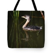 Pied-billed Grebe In The Reeds Tote Bag