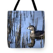 Pied-billed Grebe, Montreal Botanical Tote Bag