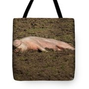 Pig In Mud Tote Bag