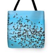 Pigeon Flight Tote Bag