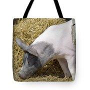Piggy Piggy In The Straw Tote Bag
