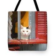 Pika Boo Tote Bag