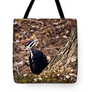 Pileated Woodpecker 3 Tote Bag