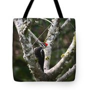 Pileated Woodpecker In Cherry Tree Tote Bag