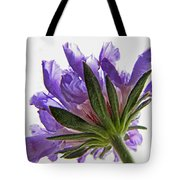 Pinchushin In The Sun Tote Bag