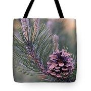 Pine Cone At Sundown Tote Bag