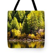 Pine Reflection At Georgetown Lake Colorado Tote Bag