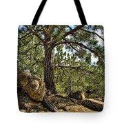 Pine Tree And Rocks Tote Bag