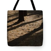 Pines Of Msu Tote Bag