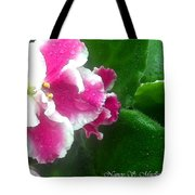 Pink African Violets And Leaves Tote Bag
