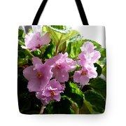 Pink African Violets Tote Bag