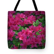 Pink Along The Fence Tote Bag