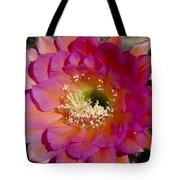 Pink And Orange Cactus Flower Tote Bag