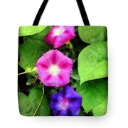 Pink And Purple Morning Glories Tote Bag