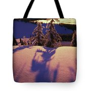 Pink And Purple Sunrise Shadows Of Snow Tote Bag by Natural Selection Craig Tuttle
