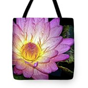 Pink And Yellow Waterlily Tote Bag