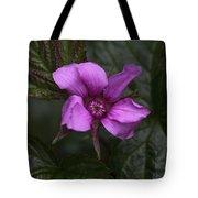 Pink Beauty Tote Bag