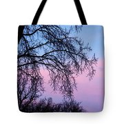 Pink Blue Sky Tote Bag