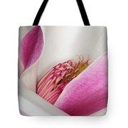 Pink Bursting Color Tote Bag
